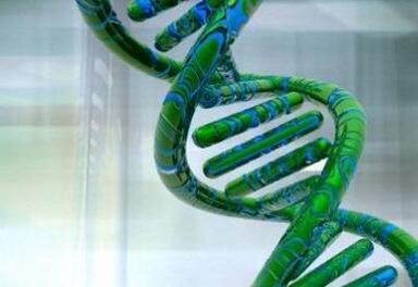 不可思议:科学家人工合成DNA创造新生命