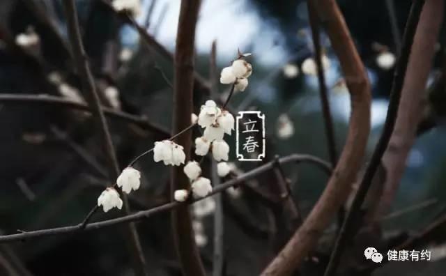 新春到,如何顺应节气调养身体?送你全年777第四色米奇影视月历收好不谢