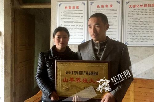[新春走基层]重庆70后农民回乡创业 勤学苦钻终成养殖专家