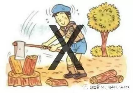 忌斧子劈木柴