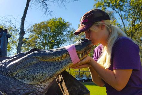 美国女护士辞掉工作当起专职鳄鱼捕手