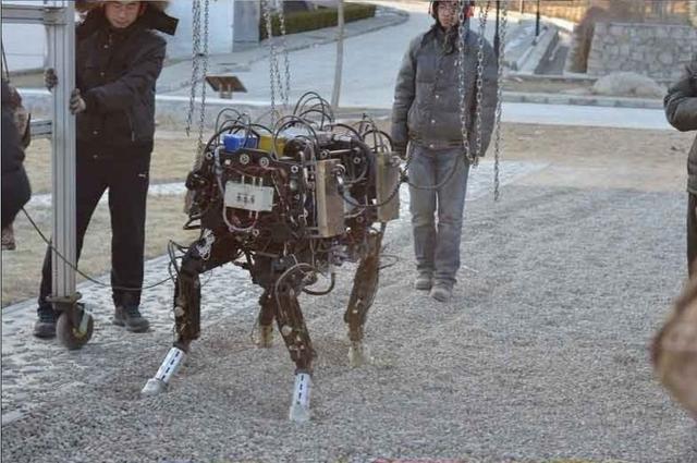 美媒:中国在中美人工智能竞赛逐渐追上美国