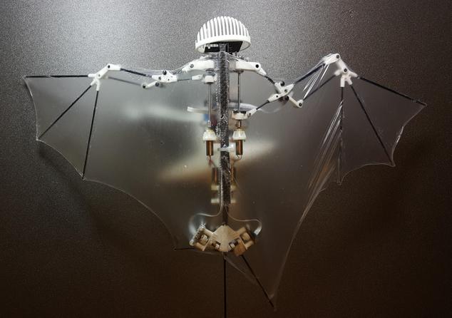 潜力无限!美国研发重量仅85克蝙蝠机器人