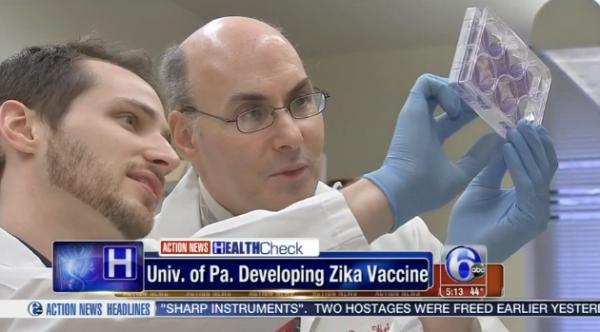 一种新的寨卡疫苗在动物实验中成功