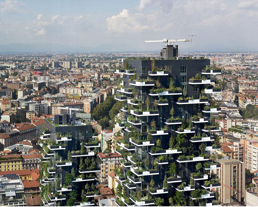 """南京有望诞生""""垂直森林"""" 为亚洲首例"""