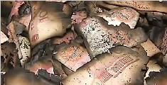 男子放67万元在家过年 一场大火被烧个精光