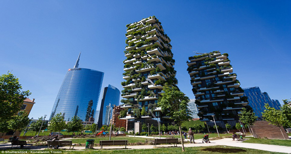 南京欲建新地标森林塔 植被面积超6000平方米