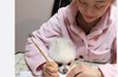 潘晓婷早起带狗练毛笔字 被赞玉手如葱保养有方