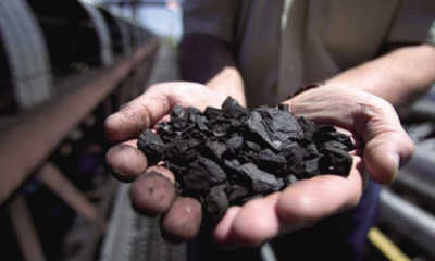 """今年煤价会否再演""""过山车"""""""