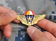 想获得这枚徽章需要付出什么?