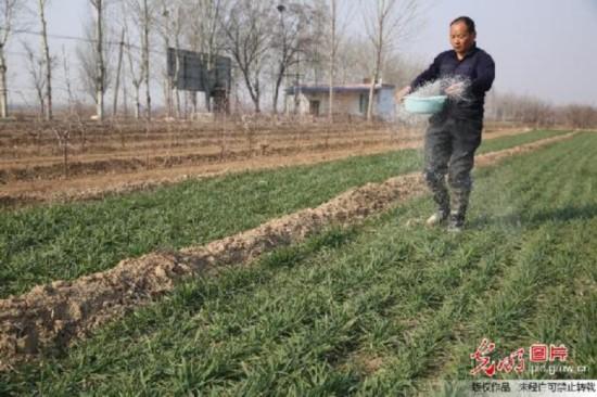 农业供给侧改革:钱袋子鼓了