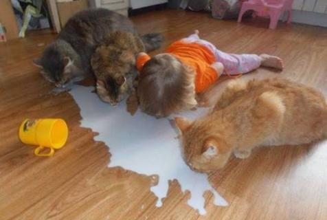 可爱爆了!动物和萌孩儿欢脱日常
