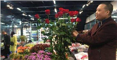 四川成都现天价玫瑰 一束1500元还是批发价