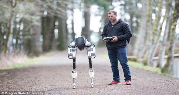 美国一公司制造出鸵鸟机器人 外形呆萌可爱
