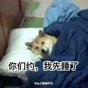 狗粮吃饱了吗?吃饱了就该睡了![喵喵][喵喵] 