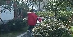 庭院式公厕亮相武汉 院内种花树还可按摩