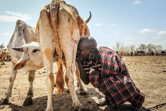 非洲部落土著每天走10小时找水 饱受折磨