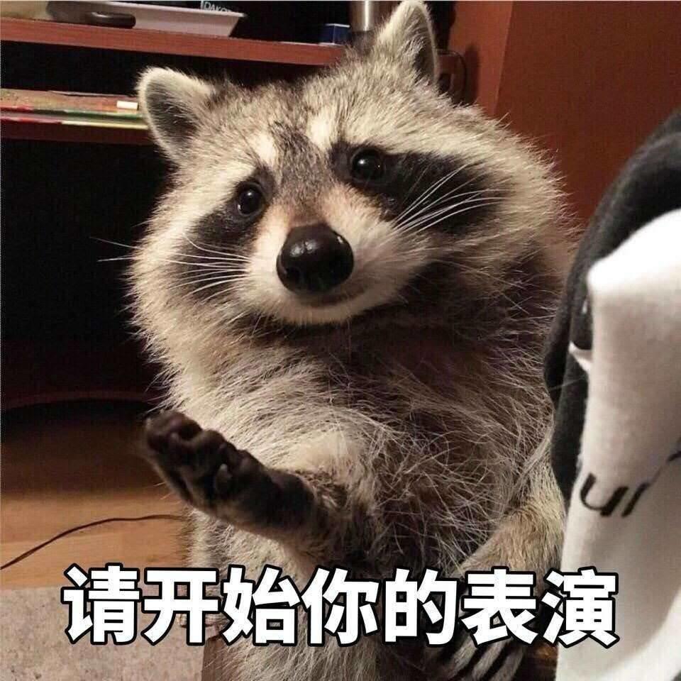 萧敬腾唱的这首歌是要认爱林有慧?其实表情和的斗猫咪图小qq明星包可爱图片