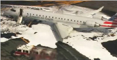 美国一飞机撞鹿 紧急折返有惊无险