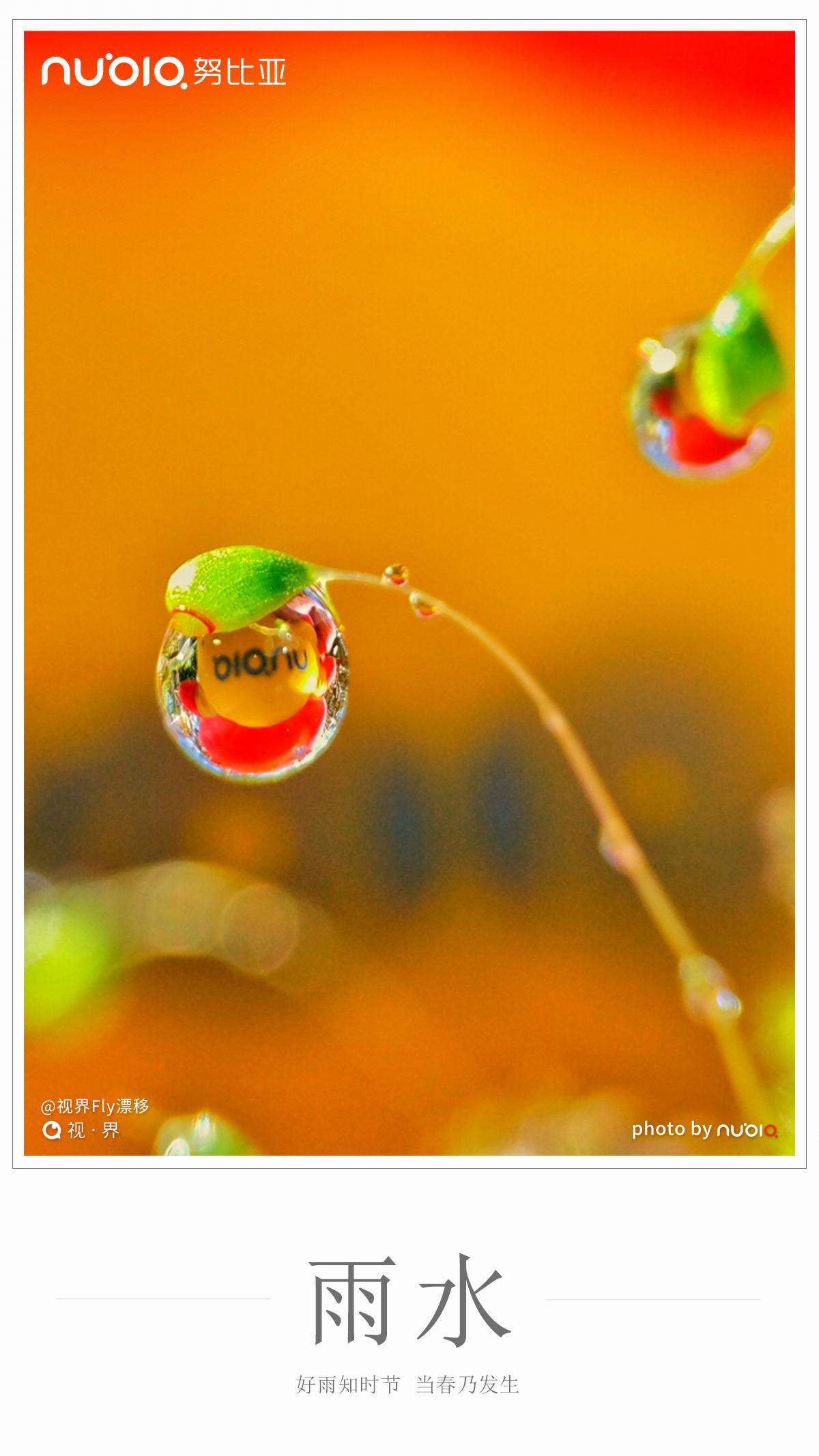 #雨水#前后,东风解冻,散而为雨,万物萌动,春将伊始