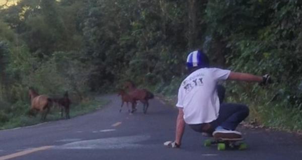 男子踩滑板下山遇狂奔野马群被迫停下