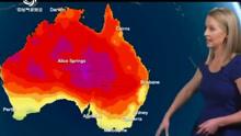 澳大利亚东部遭遇历史高温