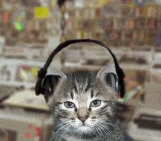 超级小课堂丨学会听歌识曲,秒启疯狂猜歌模式!