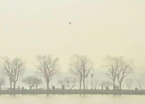 本周将迎降温丨杭州的这件事儿又拿了世界第一!