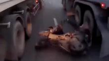 男子骑摩托在两卡车间摔倒