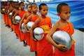 泰国小和尚去化缘:身披橙色僧衣手托银色法钵