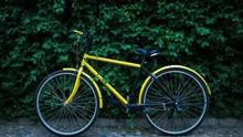 共享单车呼唤共享文明