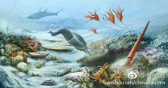 我国科学家解开二叠纪末大灭绝后生命复苏迟缓之谜