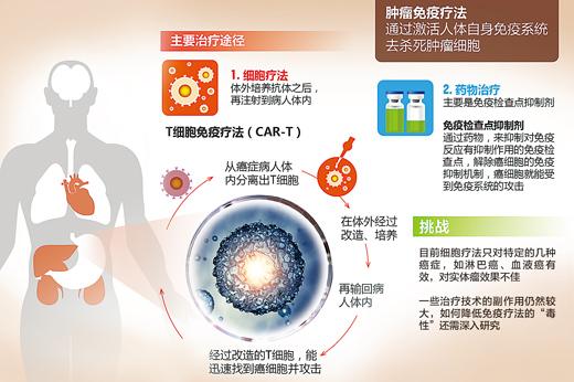 免疫疗法治肿瘤靠谱吗