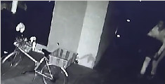 笨贼欲偷几十斤重保险箱内物品 撬不开直接抱走