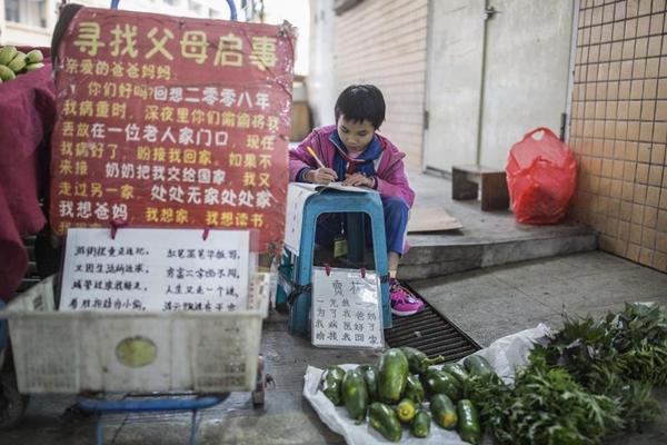 父母汶川地震后失联 9岁女孩卖菜寻亲