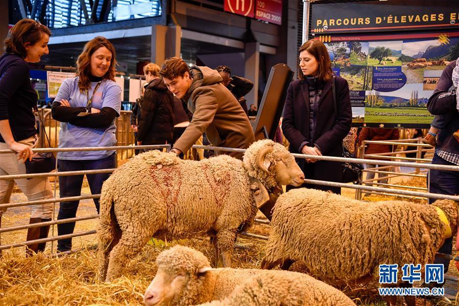 法国国际农业博览会在巴黎开幕(组图)