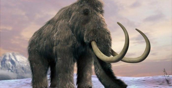 研究人员力劝在复活灭绝物种时要谨慎