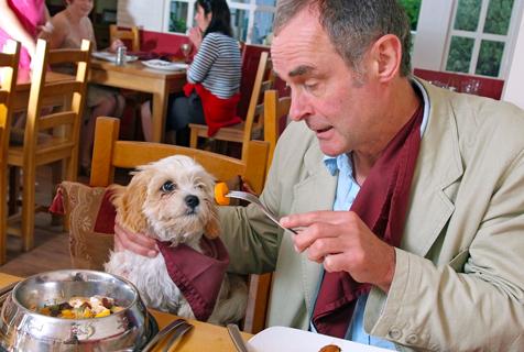英餐厅推出狗狗美食菜单与主人一同用餐