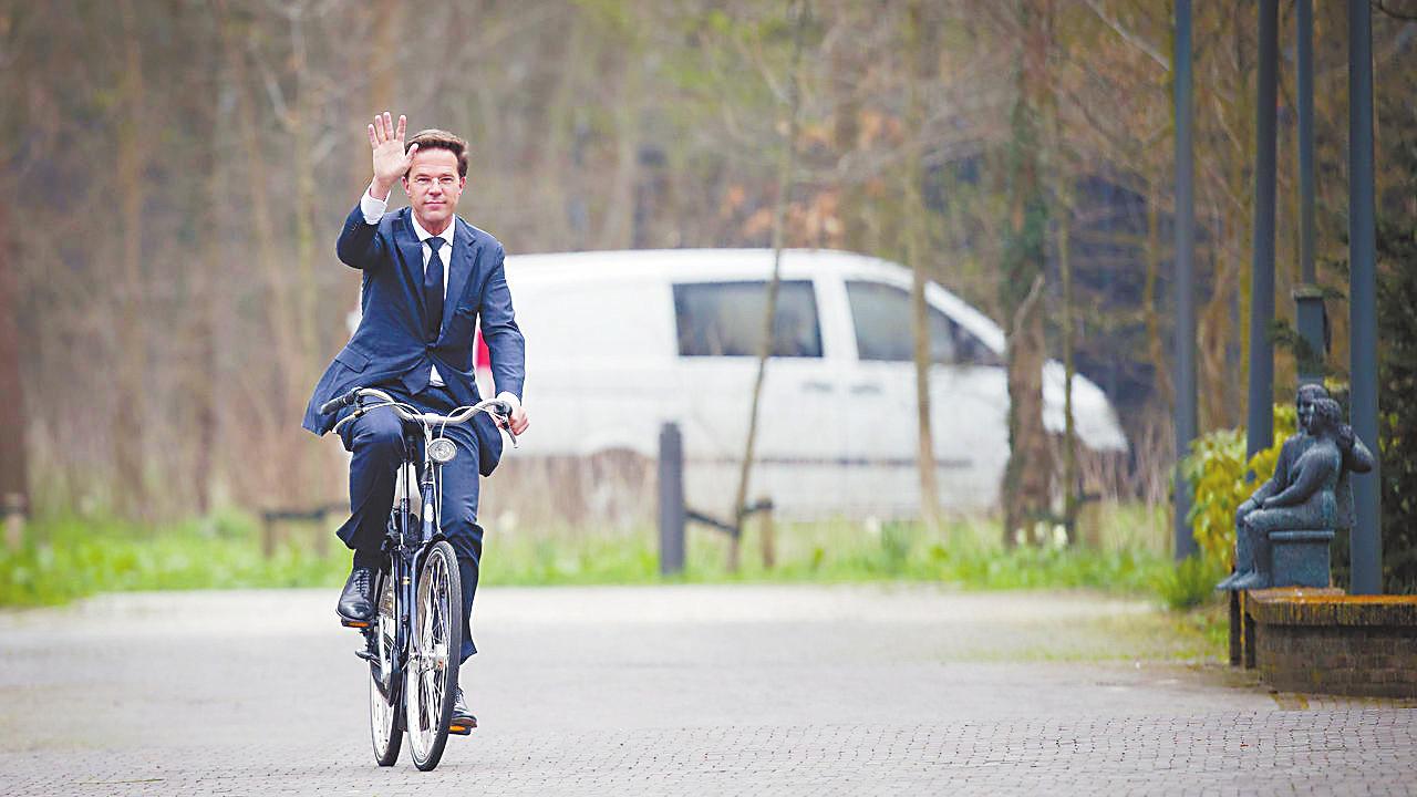 管理专业 路牌细致 在荷兰,骑行是一种享受