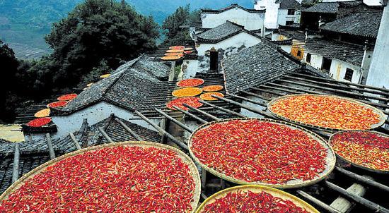 辣椒为何在短短几百年征服了中国人