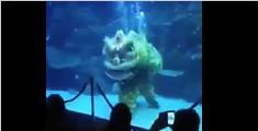 水下舞狮惊呆观众