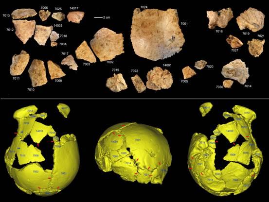 考古学家在中国发现新的古代人类