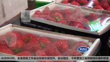 难道吃草莓真的会感染病毒?