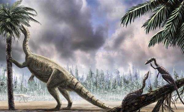 恐龙为啥能两条腿走路?感谢大尾巴