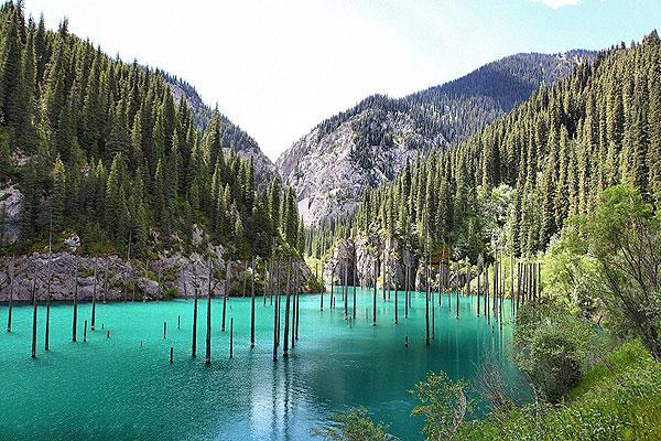 神奇!哈萨克斯坦一湖泊水下森林似仙境