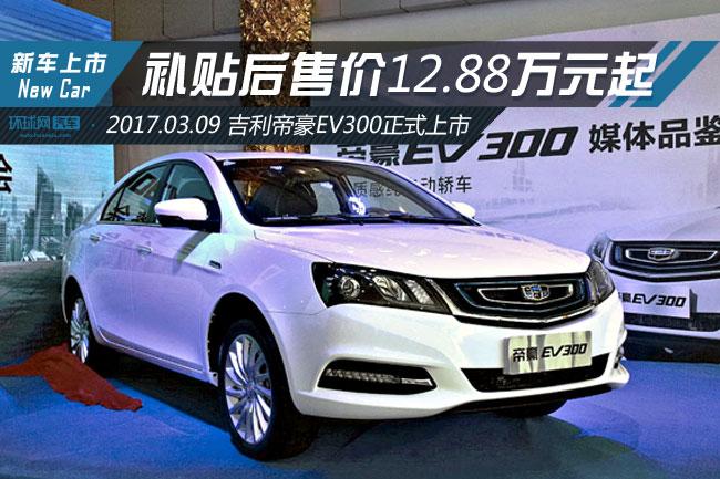 吉利帝豪EV300正式上市 补贴后售价12.88万起-新车高清图片