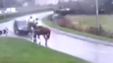 人仰马翻!英国俩男子骑马遭汽车迎面撞飞