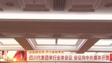 四川代表团举行全体会议 会议向中外媒体开放