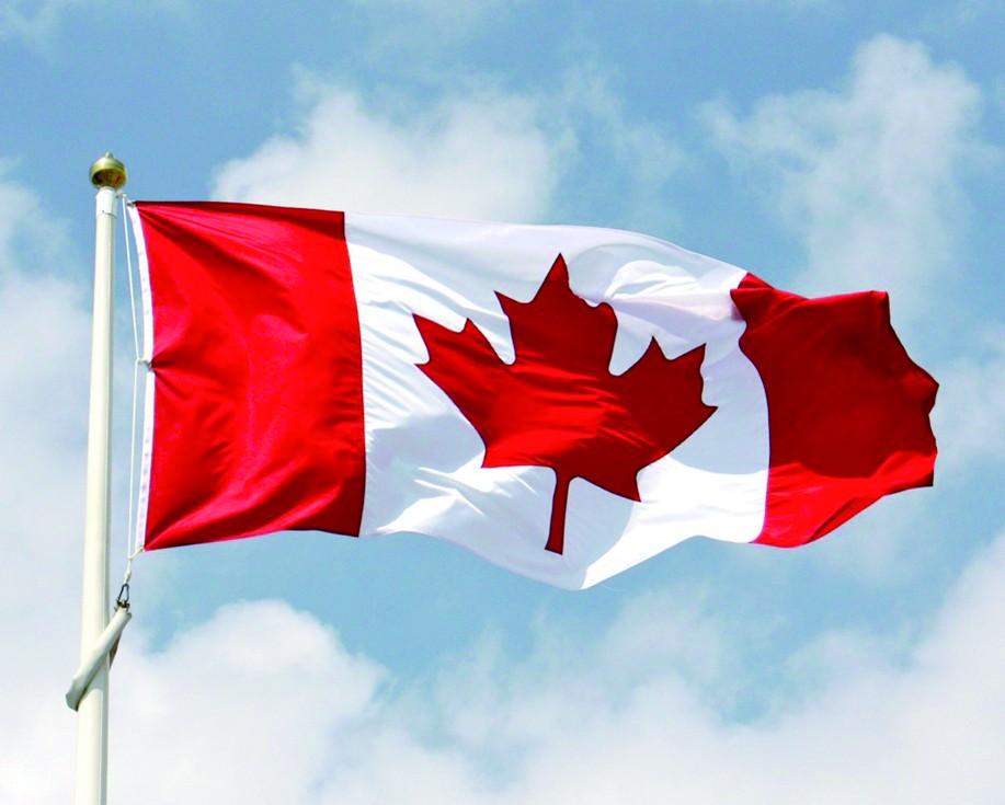 """加拿大""""国旗枫""""现实中不存在"""