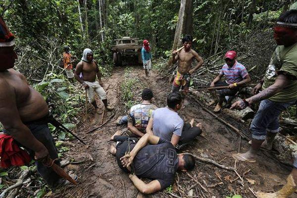 亚马逊森林里的盗木贼,遇印第安部落的下场